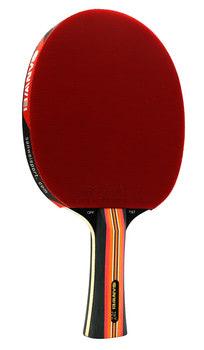 Sanwei TS7 Racket
